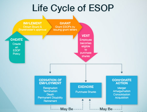 Using ESOPs To Attract, Acquire and Retain High-Quality Talent